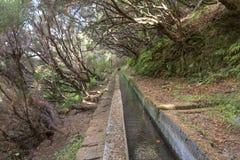 Facendo un'escursione lungo il rifornimento idrico storico del Madera che systemHiking lungo l'adduzione di acqua storica del Mad Immagine Stock