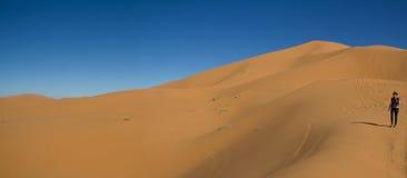 Facendo un'escursione nel deserto Fotografia Stock