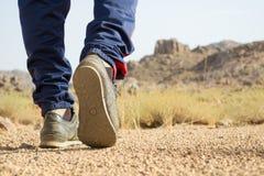 Facendo un'escursione nel deserto Fotografie Stock