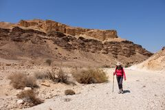Facendo un'escursione nel deserto di Negev immagini stock libere da diritti