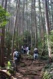Facendo un'escursione nel Giappone Immagini Stock