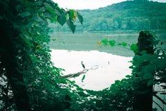 Facendo un'escursione nel lago Immagini Stock