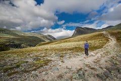 Facendo un'escursione nel parco nazionale di Rondane Fotografia Stock Libera da Diritti