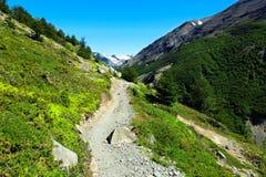 Facendo un'escursione nel parco nazionale di Torres del Paine, il Cile Fotografia Stock Libera da Diritti