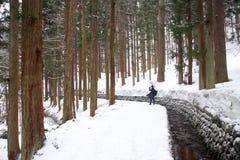 Facendo un'escursione nella neve Fotografia Stock Libera da Diritti
