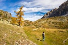 Facendo un'escursione nelle alpi, stagione variopinta di autunno Immagini Stock Libere da Diritti