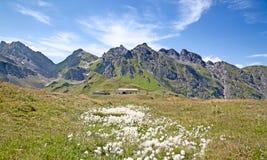 Facendo un'escursione nelle alpi svizzere Immagine Stock