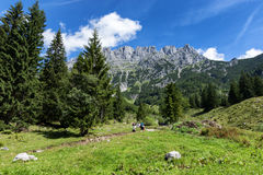Facendo un'escursione nelle alpi un giorno soleggiato Catena di Wilder Kaiser vicino a Wochenbrunner Alm, Tirolo, Austria Fotografia Stock