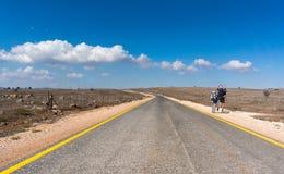 Facendo un'escursione nelle alture del Golan di Israele Fotografia Stock