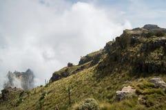Facendo un'escursione nelle montagne di Simien, l'Etiopia Fotografie Stock Libere da Diritti
