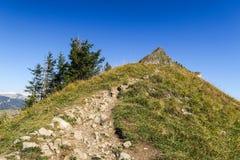 Facendo un'escursione nelle montagne svizzere sbalorditive, vista delle alpi, verde immagini stock