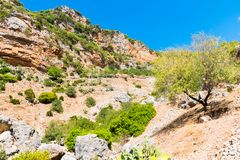 Facendo un'escursione in Rif Mountains del Marocco sotto la città di Chefchaouen, il Marocco, Africa immagine stock