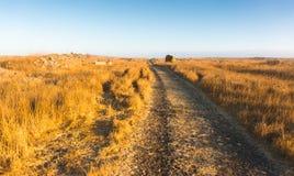 Facendo un'escursione sul paesaggio di Golan Heights Fotografia Stock Libera da Diritti
