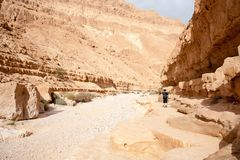Facendo un'escursione in un deserto di Judean di Israele Fotografia Stock Libera da Diritti