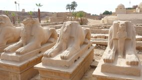 Facendo un giro turistico nel tempio archivi video