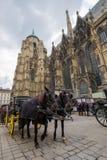 Facendo un giro turistico a Vienna fotografie stock
