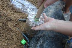 Facendo uso della stampa di legno lavorata nella scanalatura per la borsa infettata del fungo Immagine Stock