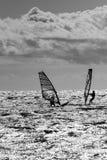 Facendo windsurf nell'azione Fotografie Stock