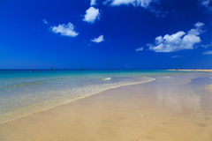 Facendo windsurf su Fuerteventura Immagine Stock