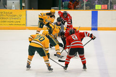 Faceoff in NCAA Hockey Game Royalty Free Stock Image