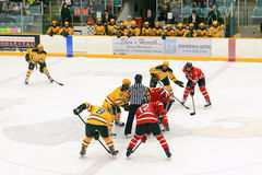 Faceoff in NCAA Hockey Game Stock Photo