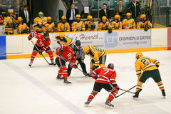 Faceoff in NCAA Hockey Game Royalty Free Stock Images