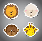 Faces animals Stock Images
