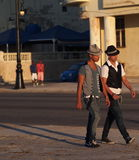 Faces Of Cuba-Young Men Along The Malacon Royalty Free Stock Images