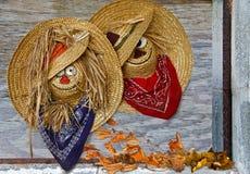 Faces felizes em chapéus de palha Fotografia de Stock Royalty Free