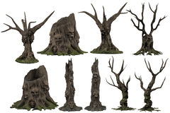 Faces and skulls in tree stumps Royalty Free Stock Photography