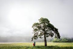Facet i dziewczyna spotykamy mgłowego świt zdjęcie stock