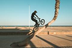 Faceta doskakiwanie z bmx i jazda jechać na rowerze fotografia royalty free