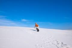 Faceta snowboarder przejażdżki w piasek diunach Fotografia Stock