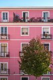 Fachada cor-de-rosa Fotos de Stock Royalty Free