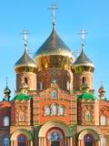 Fachada de la catedral de St.Vladimir Foto de archivo