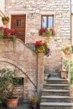 Fachada de una entrada histórica de la casa con los floreros Foto de archivo libre de regalías