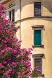 Fachada histórica de una casa vieja con las flores fotos de archivo libres de regalías