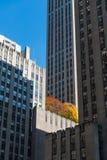 Fachadas da construção Fotografia de Stock Royalty Free