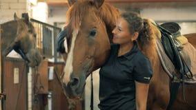 Fachowa atleta klepie konia w stajence Istota ludzka i zwierzęcy miłości pojęcie zbiory