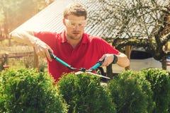 Fachowa męska ogrodniczka przycina żywopłotu podwórka w domu fotografia royalty free