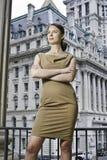 fachowa portret kobieta Obrazy Stock