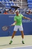 Fachowe gracz w tenisa David Ferrer praktyki dla us open 2014 Zdjęcie Stock