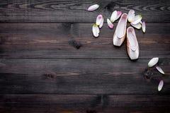 Fachowi tanów buty Baletniczy pojęcie Pointes na ciemnej drewnianej tło odgórnego widoku kopii przestrzeni Zdjęcie Stock