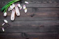 Fachowi tanów buty Baletniczy pojęcie Pointes na ciemnej drewnianej tło odgórnego widoku kopii przestrzeni Zdjęcia Stock