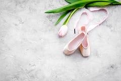 Fachowi tanów buty Baletniczy pojęcie Pointes na popielatej tło odgórnego widoku kopii przestrzeni Fotografia Stock