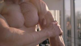 Fachowy bodybuilding, sporta mężczyzna rozważa rezultat władza trening w budynku mięśniu przy gym w naturalnym świetle zbiory