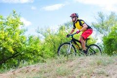 Fachowy cyklista pochodzi od wierzchołka na rowerze górskim, krańcowy sport fotografia stock