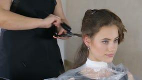 Fachowy fryzjer, stylista barwi nastoletniego dziewczyna włosy zbiory wideo