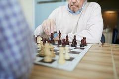 Fachowy grandmaster zdjęcie royalty free