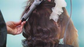 Fachowy hairstylist robi kędzierzawemu włosy dla pięknej kobiety zbiory